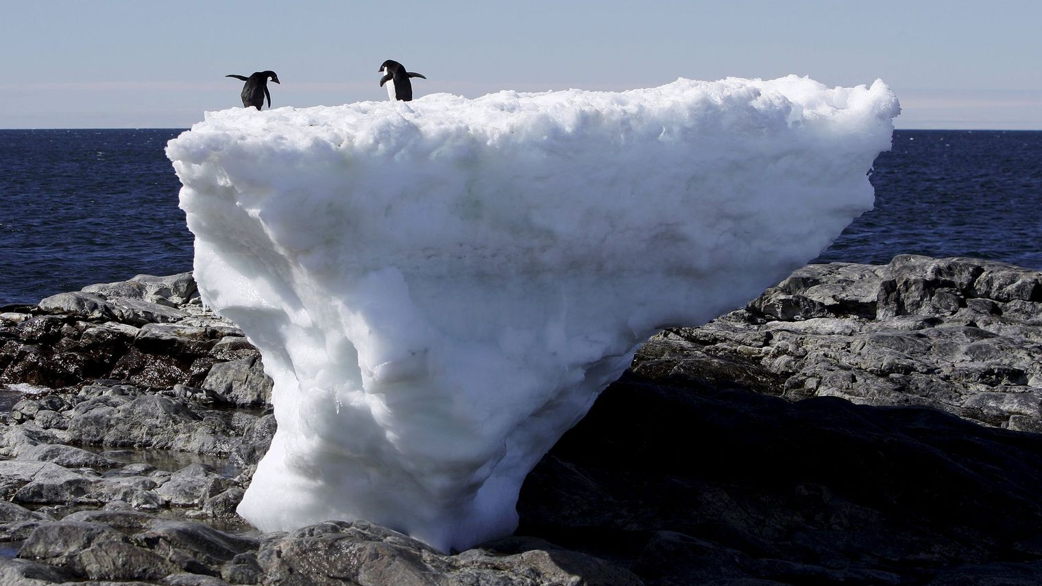 two_penguins_standing_on_a_block_of_melting_ice_in_antarctica
